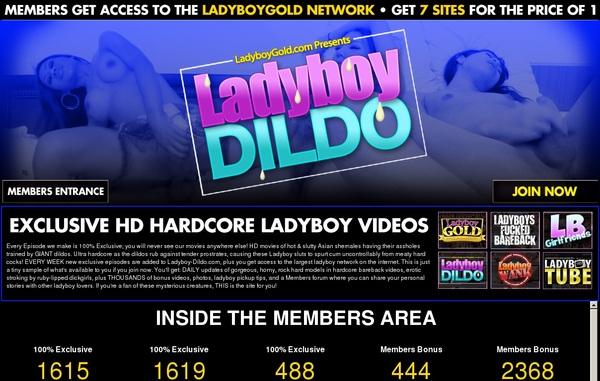 Ladyboydildo Password Generator
