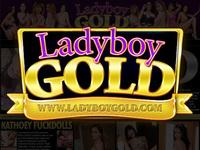 Ladyboydildo alcazar