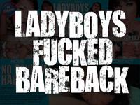 Ladyboydildo ladyboy shows