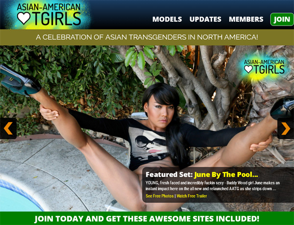 Asian American TGirls Tour