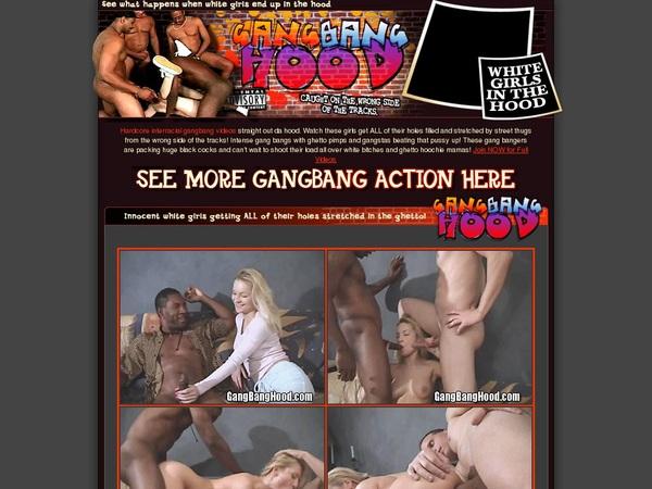 Daily Gangbanghood Acc