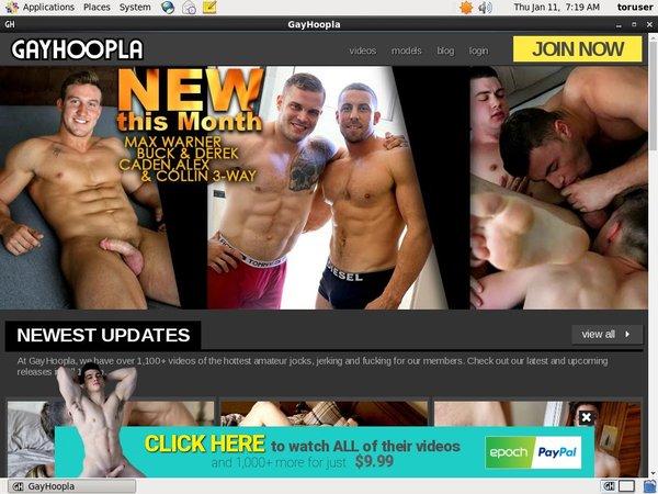 Gay Hoopla Free Porn
