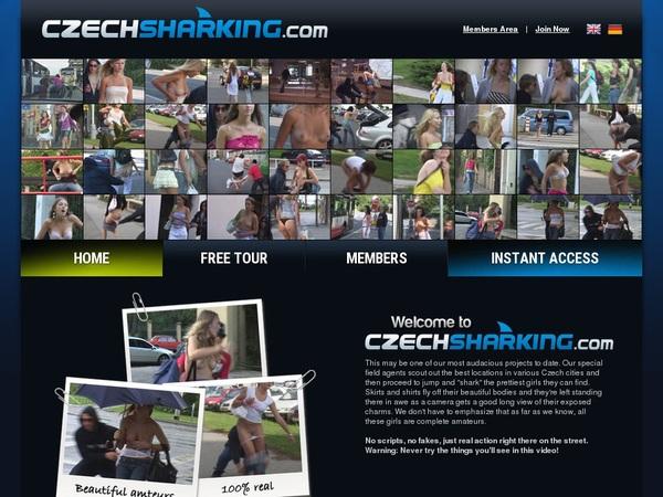 Czechsharking Direct Pay